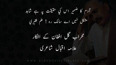 Photo of آدم کا ضمير اس کي حقيقت پہ ہے شاہد