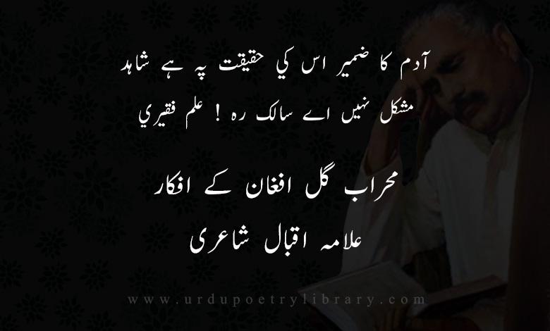 آدم کا ضمير اس کي حقيقت پہ ہے شاہد