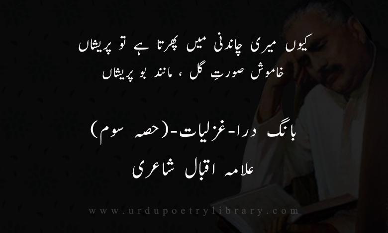 رات اور شاعر