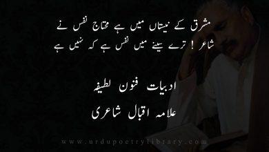 Photo of شاعر