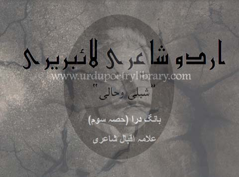 Muslim Say Aik Rooz Ye Iqbal Nay Kaha
